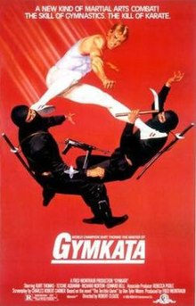 Image result for Gymkata zamir